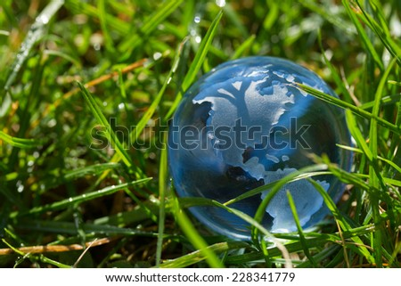 Glass globe with North America in the grass concept for environment - stock photo