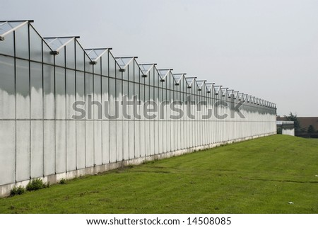 Glass greenhouses in the province of Antwerp in  the north of Belgium