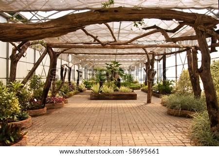 Glass house garden - stock photo