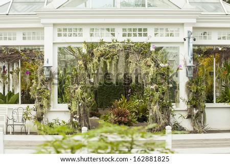 glass house, white glass house plantation garden with tree decorated - stock photo