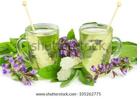 Glass mugs of ayurveda naturopathy herbal teas with sugar crystals and fresh salvia flowers on a white studio background - stock photo