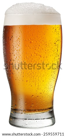 Glass of beer on white background. File contains clipping paths. - stock photo