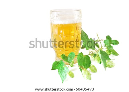Glass of beer with a hop branch on a white background