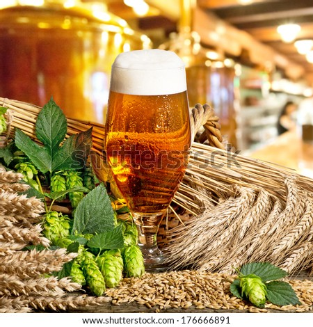 glass of beer with barley and hop cones - stock photo