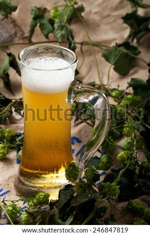 glass of beer with hop plants  - stock photo