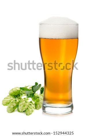 Glass of fresh beer with hop - stock photo