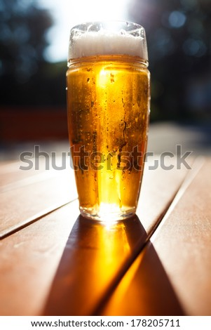 Glass of light beer, Background - blurred sunny forest. - stock photo