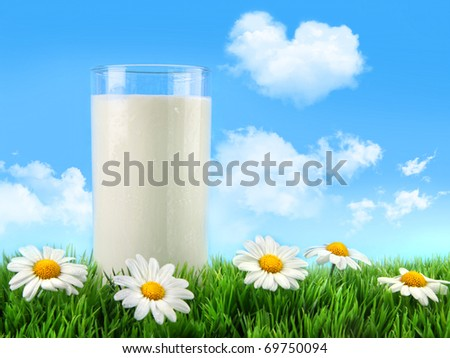 Glass of milk in the grass with daisies and blue sky - stock photo