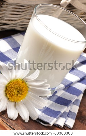 Glass of milk with daisy - stock photo