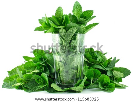 Glass of mint on a white background - stock photo