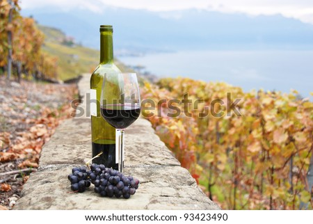 Glass of red wine and a bottle on the terrace of vineyard in Lavaux region, Switzerland