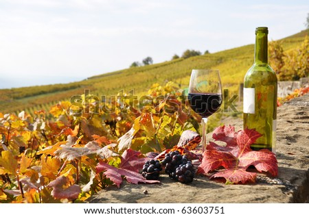Glass of red wine and a bottle on the terrace vineyard in Lavaux region, Switzerland - stock photo