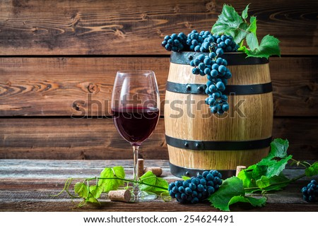 Glass of red wine in a wooden cellar - stock photo
