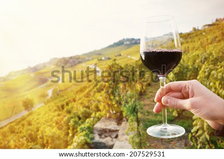 Glass of red wine. Lavaux region, Switzerland - stock photo