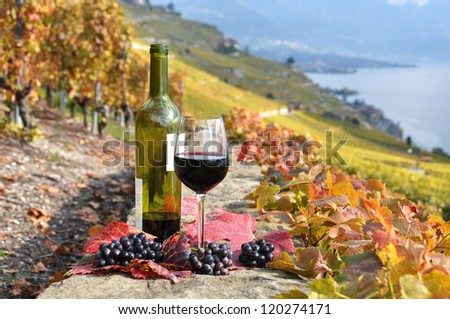 Glass of red wine on the terrace vineyard in Lavaux region, Switzerland - stock photo