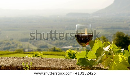 glass of red wine with a vineyard in the background