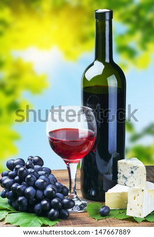 glass of red wine with grapes on a background of nature - stock photo