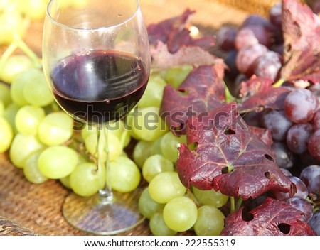 glass of red wine with white grapes and great bunch of black grapes in the fall - stock photo