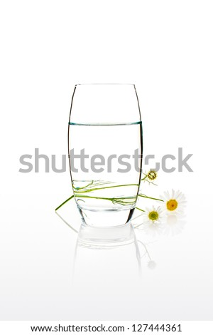 Glass of water with camomille behind and reflection under it