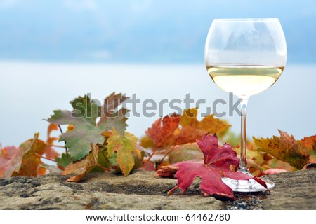 Glass of white wine and autumn leaves against Geneva lake, Switzerland - stock photo