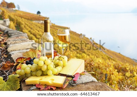Glass of white wine and chesse on the terrace vineyard in Lavaux region, Switzerland - stock photo