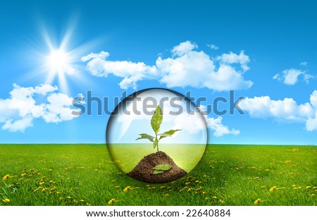 Glass sphere with plant in a field of tall grass - stock photo