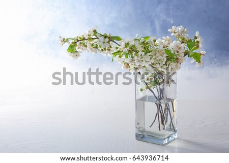 Glass Vase Beautiful Blossoming Tree Branches Stock Photo Royalty