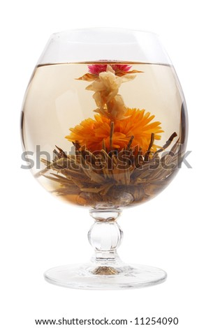 Glass with a blooming flower green tea on white background - stock photo