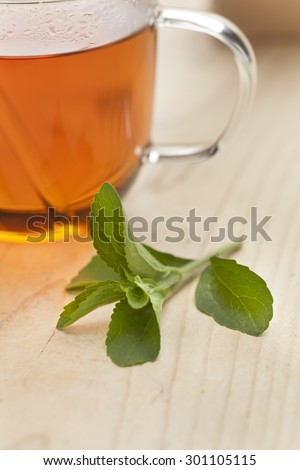 Glass with tea and fresh Stevia rebaudiana leaves as sweetener  - stock photo