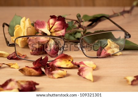 glasses and dry rose with petals close up - stock photo