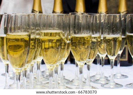 Glasses of sparkling champagne - stock photo
