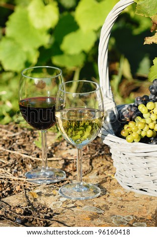 glasses of wine and grappes in basket - stock photo