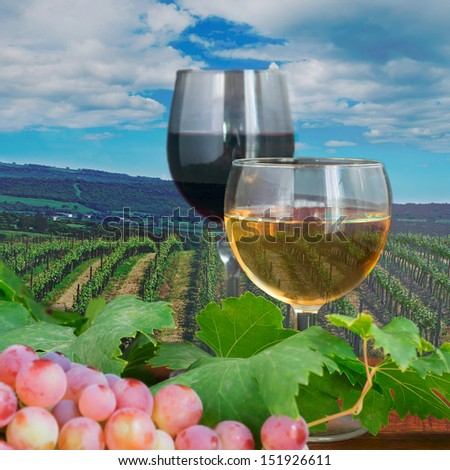 glasses of wine with grape on a wooden table in a vineyard - stock photo