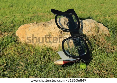 Glasses on the stone, open book and green apple on the grass