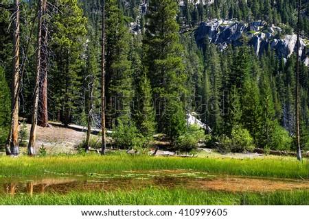 Glen neat Sotcher Lake at Devils Postpile National Monument.   Destination Mammoth Lakes ,California - stock photo
