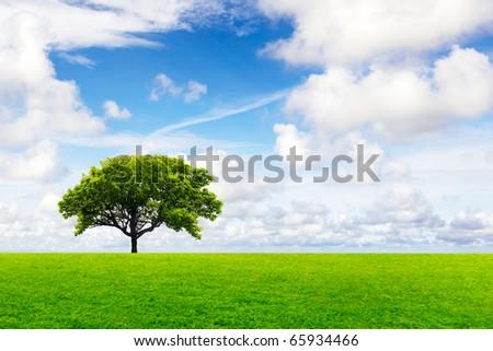 Global Environment - stock photo