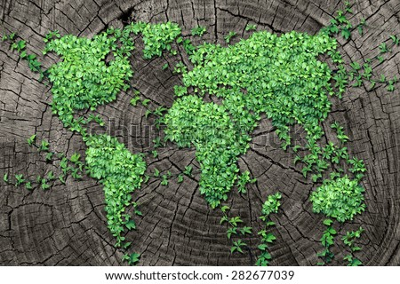 Global spread concept and development as a business concept with a map of the world made of an organized group of persistent vine leaves growing on a dead tree trunk for environmental renewal. - stock photo