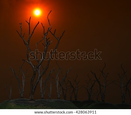 Global warming concept. Dark and burned of dead tree on twilight sky with sunset background . Wildfires concept. Silhouette of dead tree. - stock photo