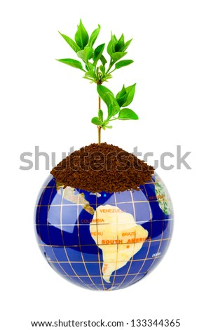 Globe and plant isolated on white background - stock photo
