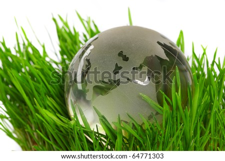 Globe in a grass - stock photo