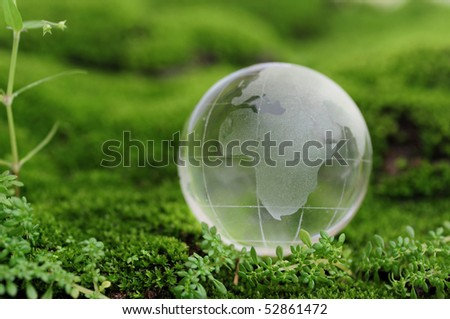 Globe on green moss - stock photo