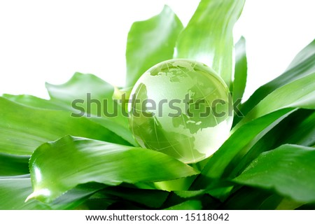 Globe on plant representing environmental protection concept US Version - stock photo