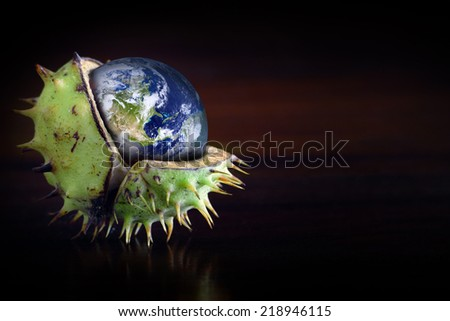 Globe protected in a broken chestnut shell, symbol of environmental conservation, ozone, greenhouse gas, collage - stock photo