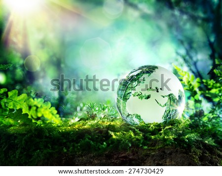 globe resting on moss in a forest - Europe and Africa - environment concept   - stock photo