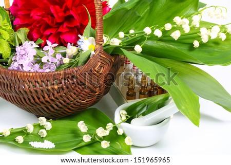 Globules, medicinal herbs - stock photo