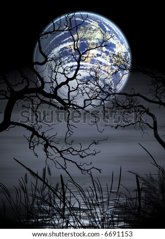 gloomy picture with bog full moon over bog - stock photo