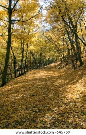 Glorious autumn scene along the Mississippi River in Minneapolis - stock photo