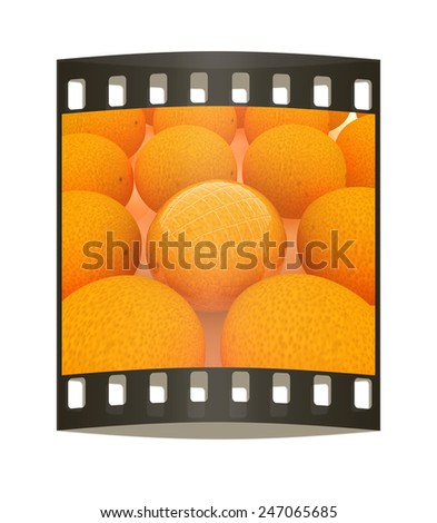Glossy ripe oranges - stock photo