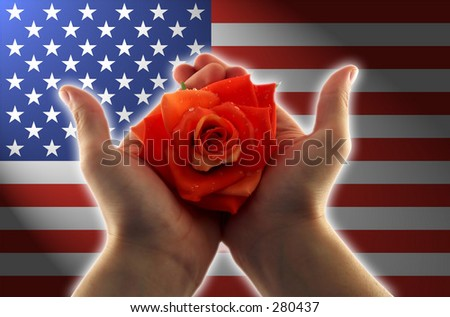 glowing hands holding a red rose, clear american flag in the background - stock photo