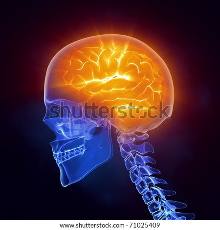 Glowing human brain in x-ray skull - left view